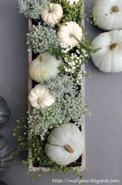 Neutral Pumkins/Gords for a great fall centerpiece: