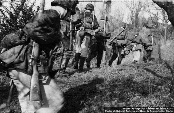 Waffen SS Formation In WW 2
