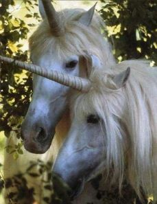 Legend Unicorns: