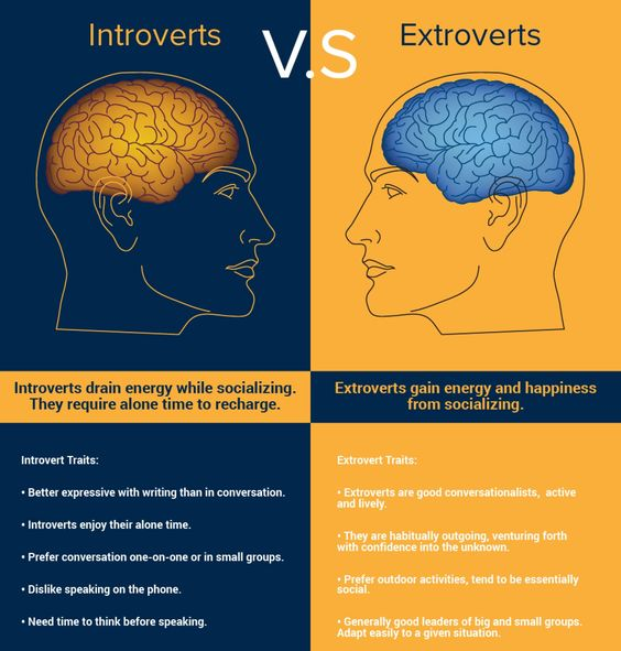 Introverts vs Extroverts: 16 Personality Types ...