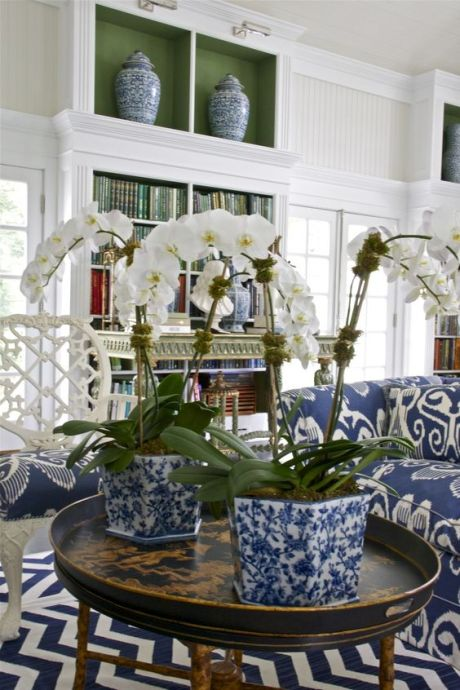 blue & white: