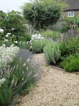 Gardening Gone Wild: English Garden Path...the path way and the edging are perfec..: