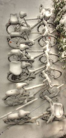 winter bycicles holland