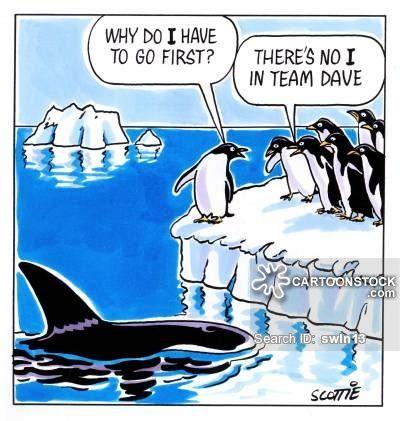 'Why do I have to go first?' 'There's no I in team, Dave ...
