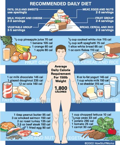 Calorie chart, Food pyramid and Charts on Pinterest