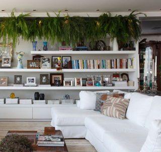 (Foto: todeschinicuiaba.wordpress.com) #samambaia #sala #plantas: