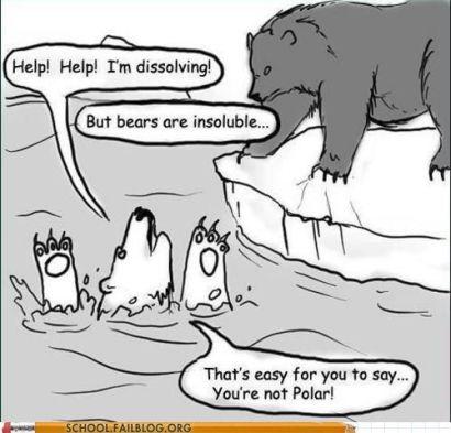 Image result for fat soluble joke