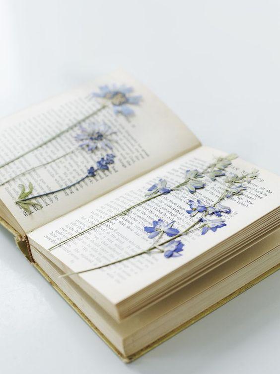 Things of the past ( 70's, 80's, 90's ) - Dingen van vroeger ( 70's, 80's, 90's ) ( Bloemen drogen tussen een boek )