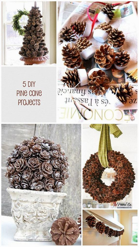 5 Pine Cone DIY Projects For Fall Pine Cone Craft Ideas
