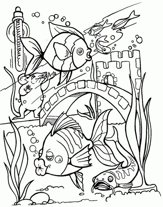 coloring tropical fish and tropical on pinterest