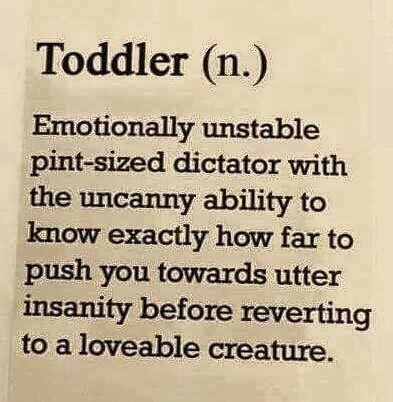 5e2bc89d25d00ebed102ba6bedd938cb?resize=400%2C409&ssl=1 funny parenting memes of the week vol 2 parenting is hard,Funny Parenting Memes
