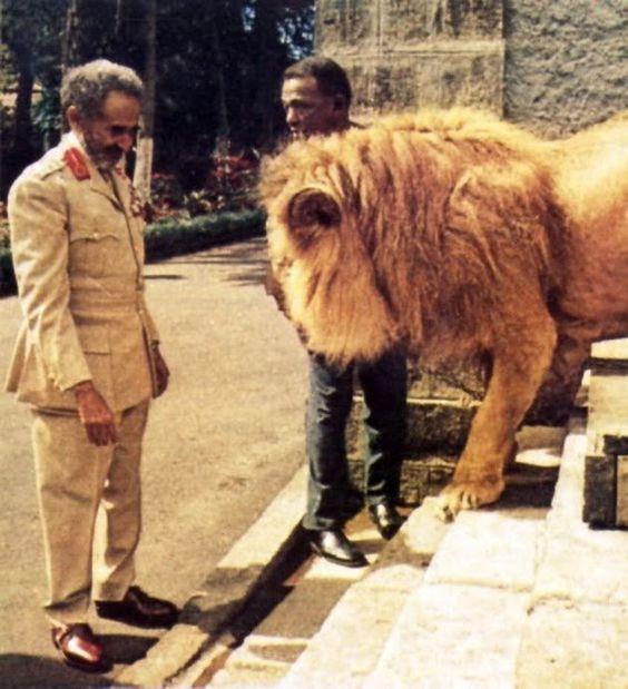 Haile Selassie I & Lion. #UnityByRastaEmpire: