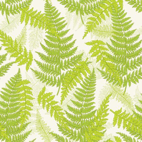 Botanical Ferns - Spring fabric by diane555 on Spoonflower - custom fabric: