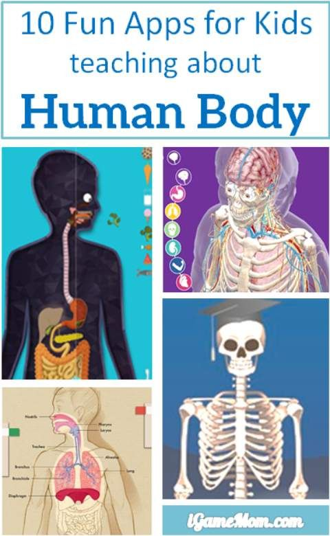 10 Apps for Kids to Learn About Human Body   Apps, Will ...