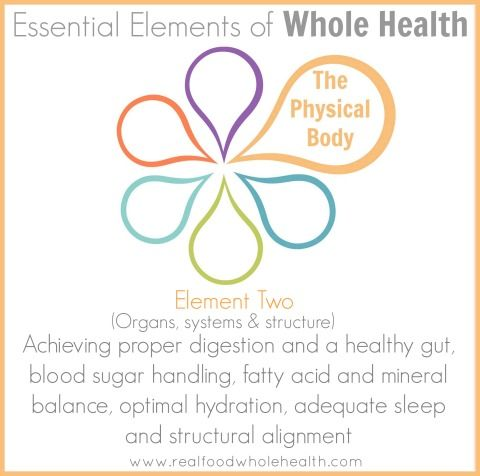Essential Elements Series- Element Two: The Physical Body ...
