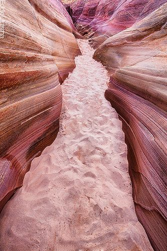 pink canyon, valley of fire state park, nevada: