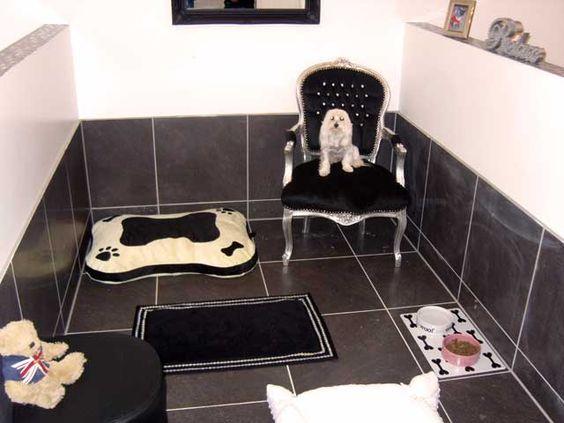 Dog Boarding Kennels, Dog Boarding And Luxury On Pinterest