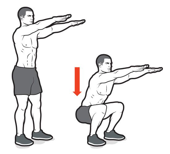 Squat Workout Exercise Routine Lunge