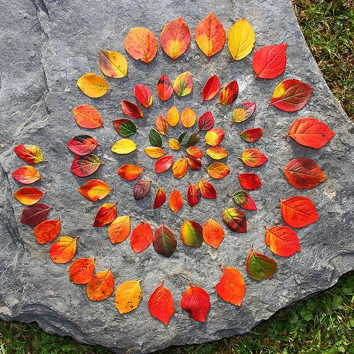 Herbstfarben   land-artgeselle   Flickr: