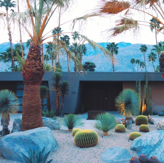 modern palm springs gardens Pinterest • The world's catalog of ideas