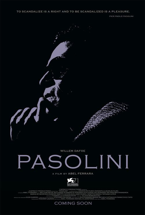 Poster do filme Pasolini