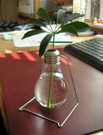 Creative and cute way to recycle old light bulbs and decorate a desk: