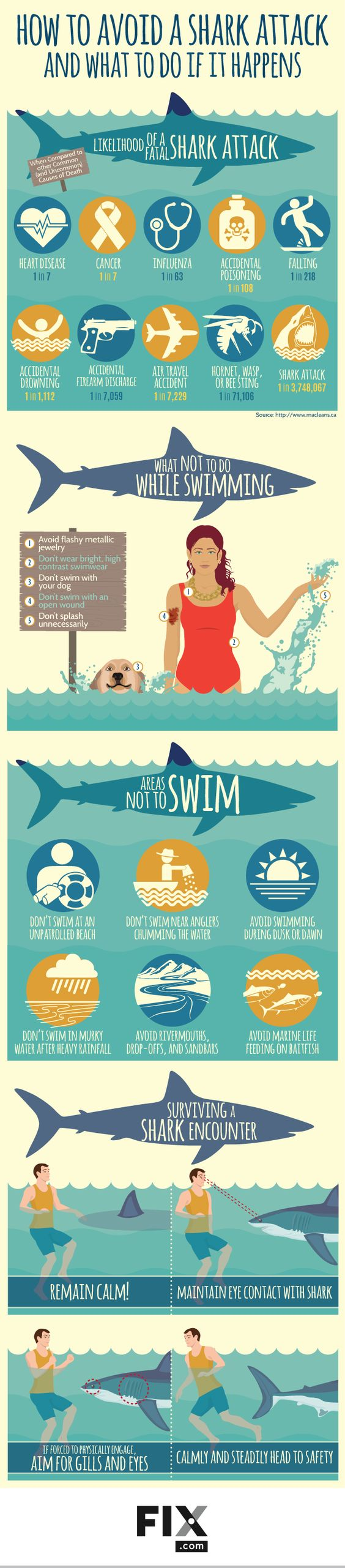 How to avoid a shark attack infographic