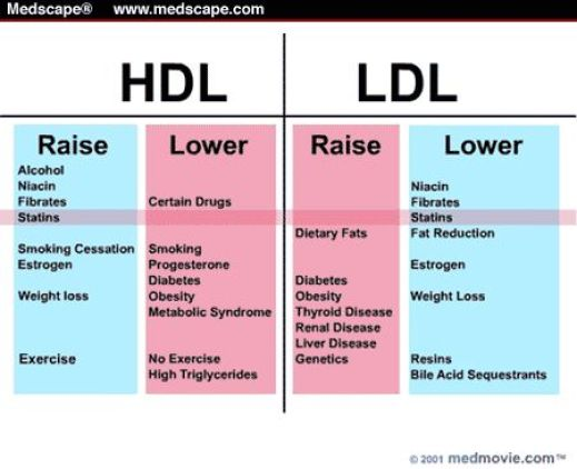 Raise HDL - Lower LDL: