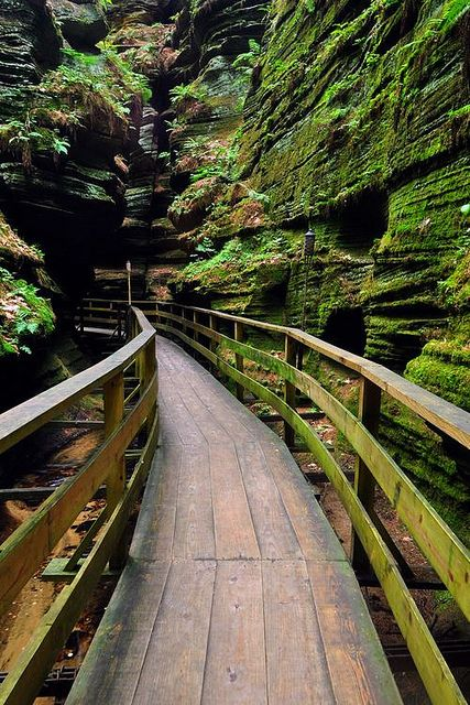 Canyon Path, Wisconsin:
