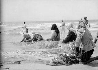 صيادون، حيفا، فلسطين ١٩٣٢ Fishermen, Haifa, Palestine 1932 Pisadores, Haifa, Palestina 1932: