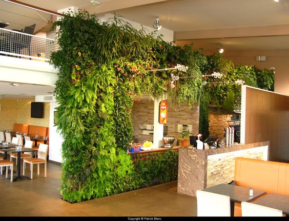 vertical garden in restaurant green walls vertical on classy backyard design ideas may be you never think id=68517