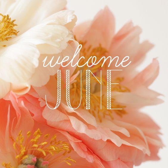 ❧ Les mois de l'année ❧: