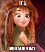 its ovulation day meme - Google Search: