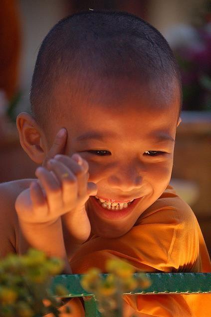 Que a alegria seja a luz do seu dia. Todos os dias! Rosi Coelho***: