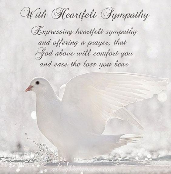 FREE To Share Sympathy Card Messages - Words Of Sympathy Picture Cards - Including Messages Of Condolence and Deepest Sympathy Cards: