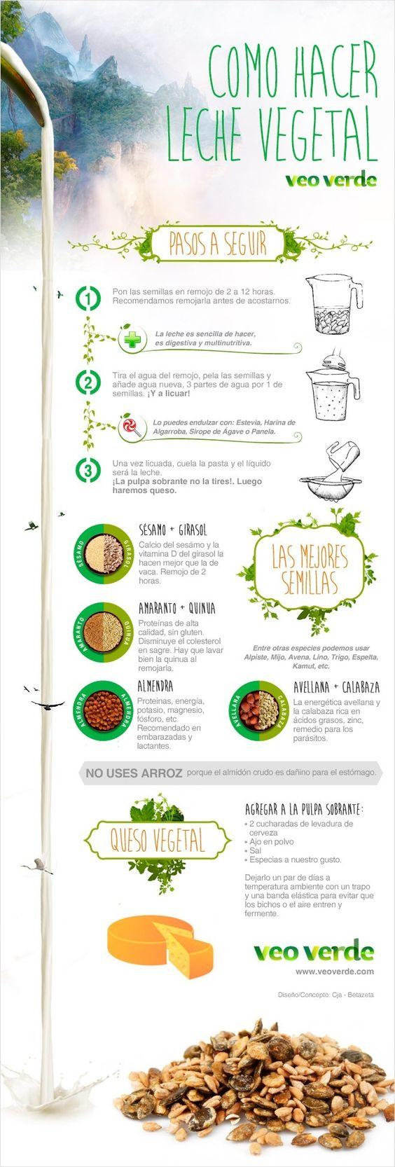 Infografía Veo Verde: Aprende a hacer leches y quesos vegetales: