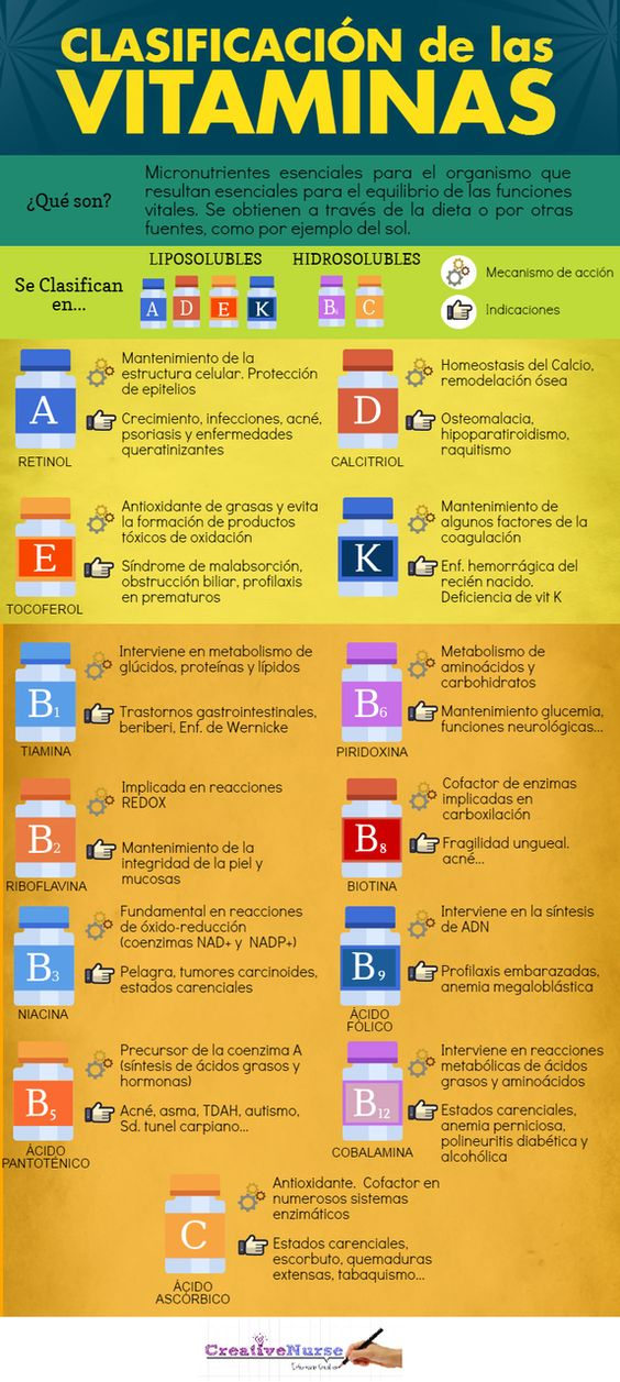 Clasificación de las vitaminas. Infografía
