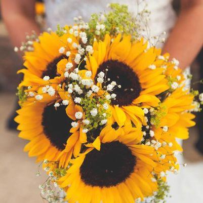 Sunflowers bouquet /