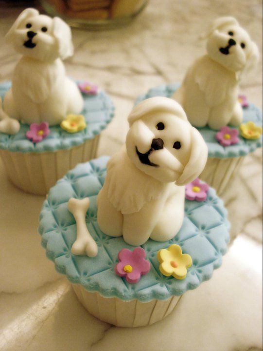 Maltese Puppies Cupcakes Designs