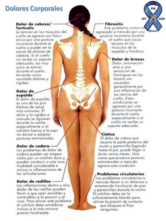 Resultado de imagen de IMAGENES Fibromiálgica