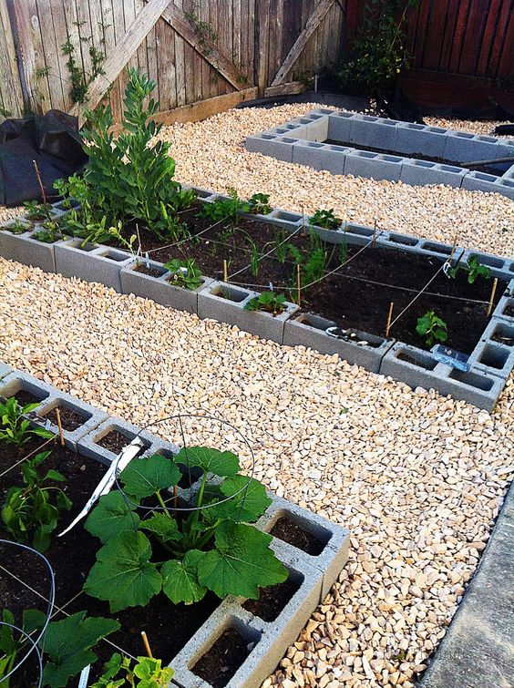 Cinder Blocks Vegetable Garden And Gardens On Pinterest
