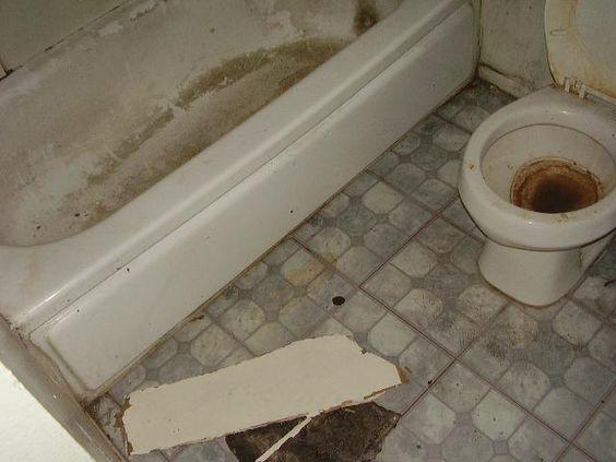 Videos Of Dirty Houses Nasty Toilet Bathtub Bathroom