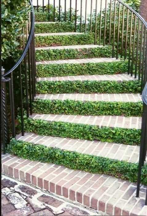 si tu escalera se encuentra en el exterior qu mejor pues las condiciones sern ms favorables para disear un jardn por debajo de esta