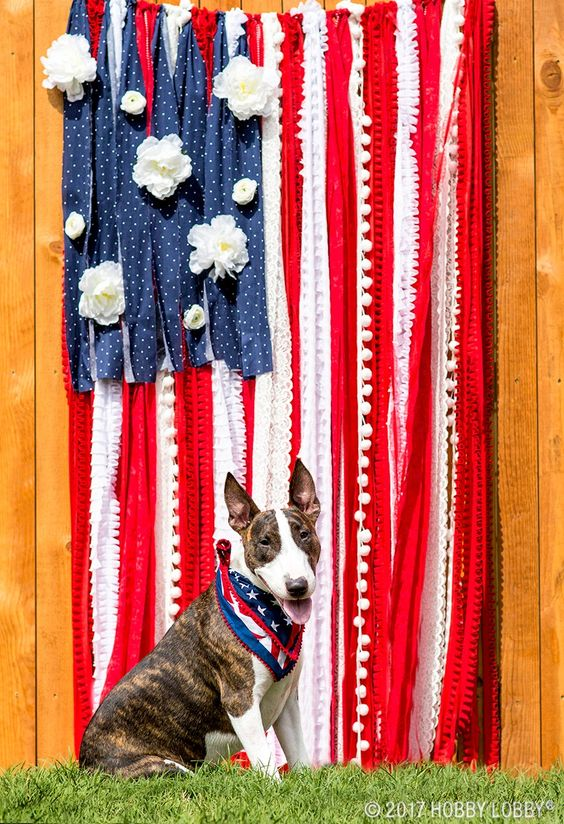 DIY a fun and festive photo backdrop for your 4th of July bash! To DIY: 1. Tie rope horizontally between stakes or fence posts. 2. Cut long strips of red and white fabric, and shorter strips of blue fabric. 3. Tie fabric and decorative trim onto rope. 4. Hot glue white flowers to fabric.