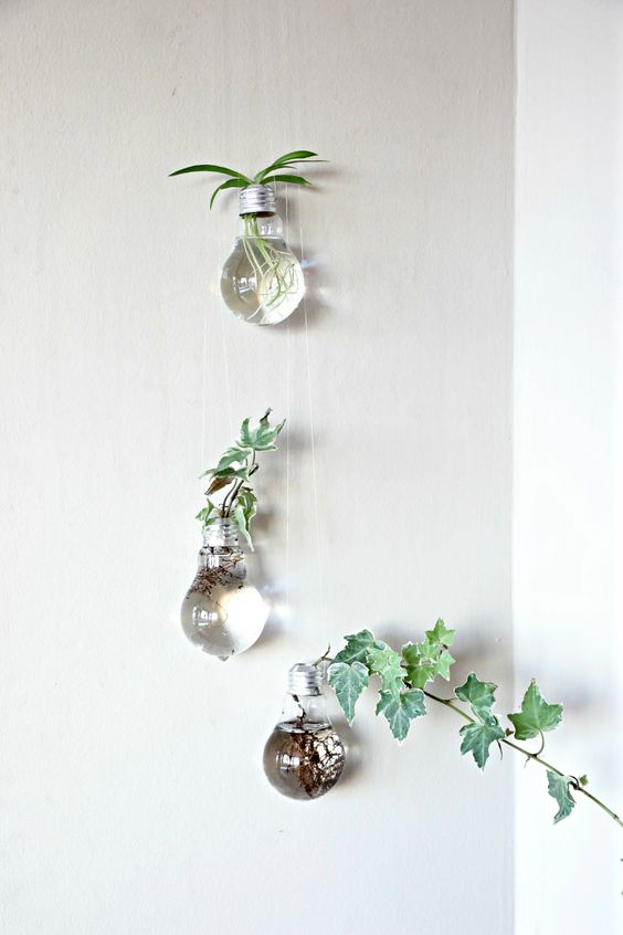 I have always wanted to try these light bulb planters ever since I saw one. Michael's actually carries a light bulb vase which would have easily served my purposes. However buying one is not as ful...: