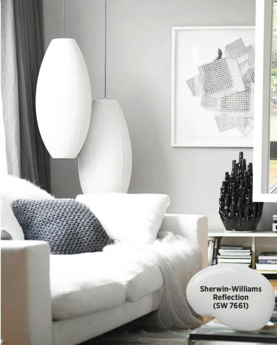 Perfect grey for living room - Sherwin William Reflection: