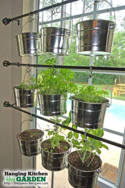 Kruidenplanten aan een gordijnrails voor het raam