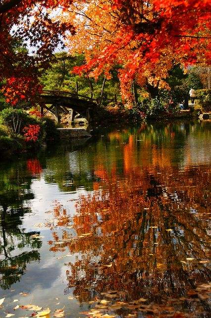Autumn Reflection: