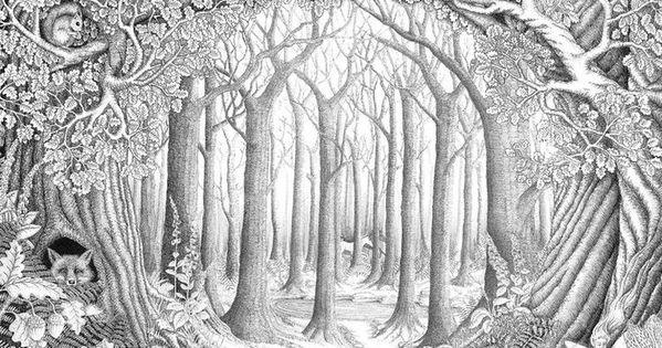 Ausmalbilder Kostenlos Wald Wald Malseite Zauberwald