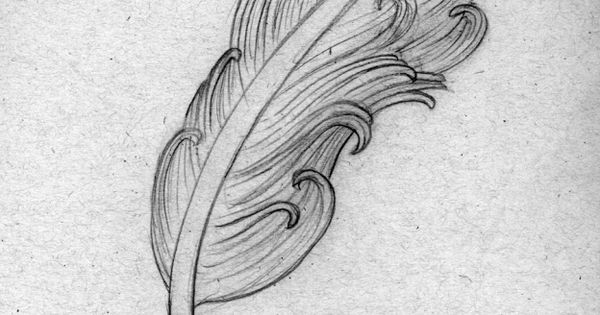 ... Drawing Of A Feather Quill Pen That I